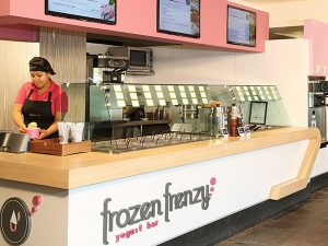 Frozen Frenzy soft yogurt